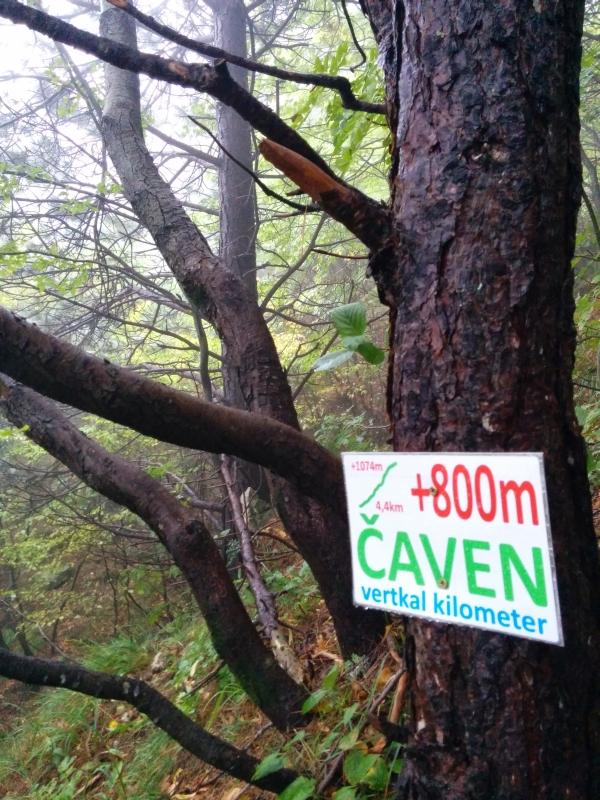 caven3